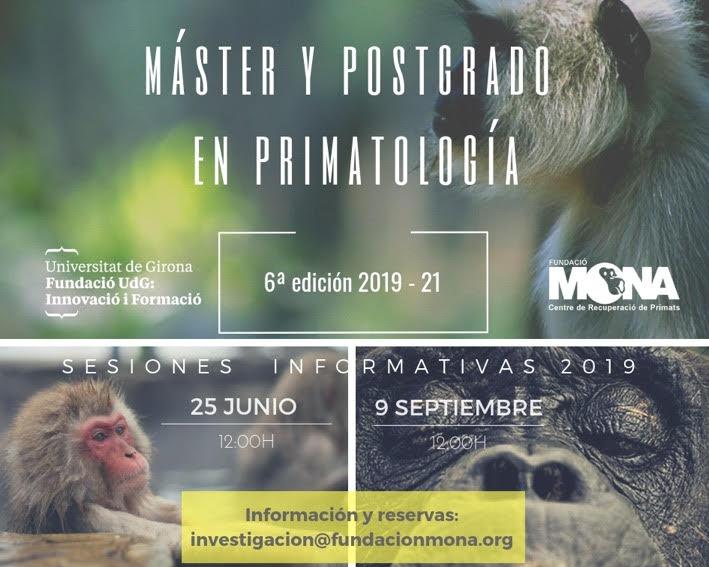 master info 2019_2021