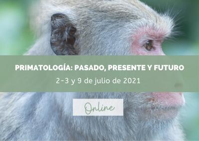 Curso primatología