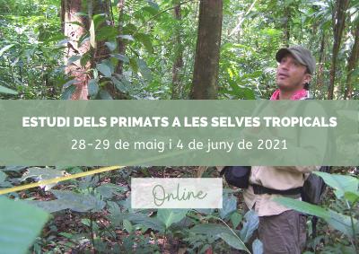 Estudi dels primats a les selves tropicals
